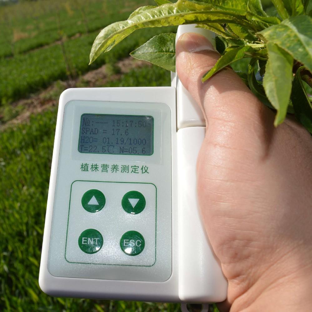 手持式叶绿素测定仪测量叶绿素含量