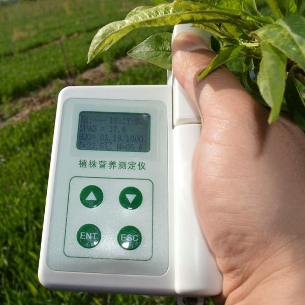 手持式叶绿素测定仪价值