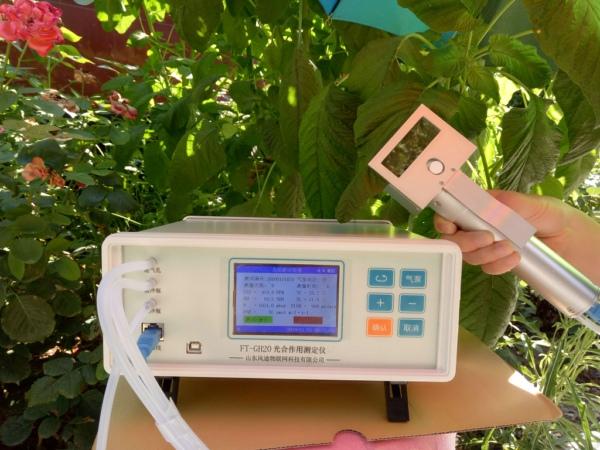 便携式光合速率测定仪FT-GH20