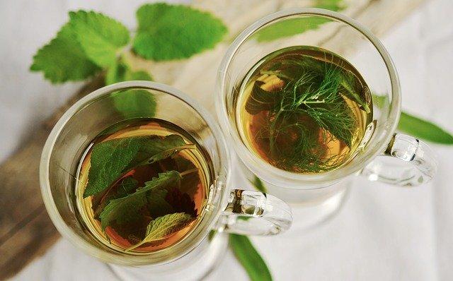 如何挑选好茶、适合自己的茶?