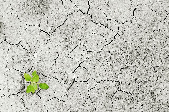 物联网技术如何应用于土壤水分监测?