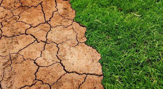 测土配方施肥三原则
